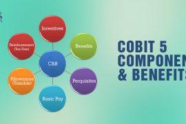COBIT 5 - Incentives, Benefits, Allowances, etc | COBIT 5 Components and Benefits